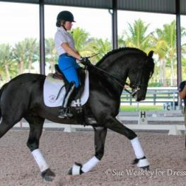 Rosie Simoes on Phil Bailey's Friesian Thys working with Robet Dover