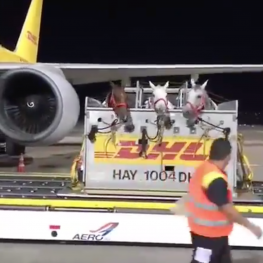 Loading the plane