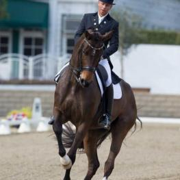 Steffen Peters, Rosamunde, CDP, California, CDI, LA Winter Dressage