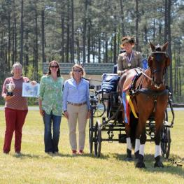 Suzy Stafford and PVF Peace of Mind, 2016 USEF Single Horse Driving National Champions