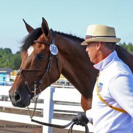 Vazquez and Esprit de Vie during the jog at the Pan Am Games