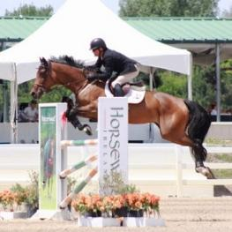 Whoop De Doo skips over the jumps with Will Simpson in the irons at the Colorado Horse Park. (Photo courtesy of the Colorado Horse Park)