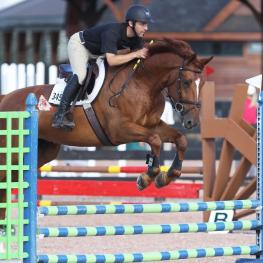 Willie Tynan of Spy Coast Farm with Kirschwasser SCF in the Premier Equestrian 0.80m Low Jumper Division at Tryon International Equestrian Center (Photo courtesy of Sharon Packer)