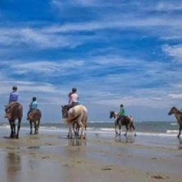 Beach riding is one of the many perks to showing at the Charleston Summer Classic.