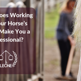 Does Working for your horses' board make you a porfessional