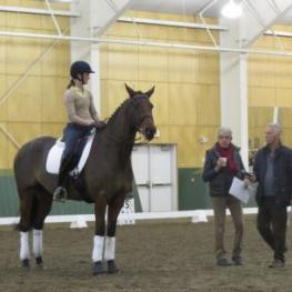 Gary Rockwell and Stephen Clarke at The FEI 5* Judges' Symposium At The Equestrian Center at Pineland Farms, New Gloucester, ME