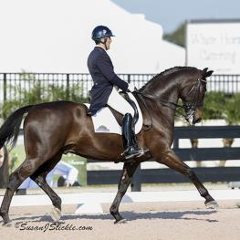 Dr. Cesar Parra and Simply Nymphenburg score a 73 percent and a first place at the 2015 Adequan Global Dressage Festival (Photo: SusanJStickle.com)