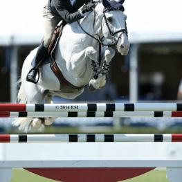 Darragh Kenny rode Gatsby to victory in the $10,000 Open Jumper class on Wednesday at the Hampton Classic.(ESI photo)
