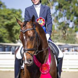EhrenGold HW and Tiffany Mahoney: USDF Final Awards Standings - Second Level, 1st place