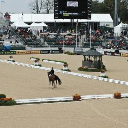 The Brentina Dressage Arena