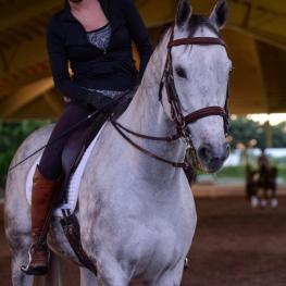 The Dressage Foundation Awards Grant to Adult Amateur Rider for Study at Spanish Riding School's Heldenberg Training Center