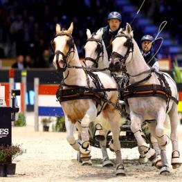 Dutch driver IJsbrand Chardon is in the lead after the first competition of the FEI World Cup™ Driving Final 2015 in Bordeaux (FRA) (Pierre Costabadie/FEI)