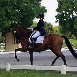 Piaffe Performance's Katie Riley and Toy Story qualified to compete at the 2015 Markel/USEF Young and Developing Horse Dressage National Championships (Photo: Piaffe Performance)