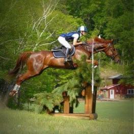 Beetle Baily and Lisa Marie Andrews jumping at the Intermediate level at Otter Creek Farm in Wisconsin. (Photo: Photo Express)