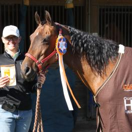 Mikhayla Daugherty and So Fan See That accept their GumBits Happy Horse Harmony Award at The Arabian Celebration at Canterbury in Newberry, Florida