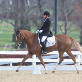 Mike Suchanek and Fleur de Lis L, pictured at the 2014 US Dressage Finals. (Photo: Mary Adelaide Brakenridge)