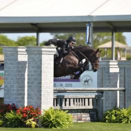Black Label, ridden by Patricia Griffith, won the $50,000 Clear Channel Hunter Derby, presented by Meadow View Farm, at the Hampton Classic. (ESI photo)