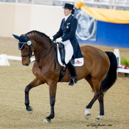 Kathleen Raine & Breanna win the Grand Prix Special at the Mid-Winter Dressage CDI. (Photo: Terri Miller)