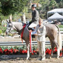 Sue Lightner's RosebudGood Luck, owned by Tish Quirk. Photo courtesy of CapturedMomentPhoto