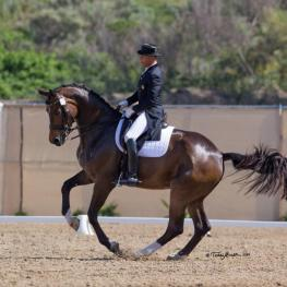 Steffen Peters & Rosamunde win the Grand Prix Special at the Capistrano Dressage International CDI. (Photo: Terri Miller)