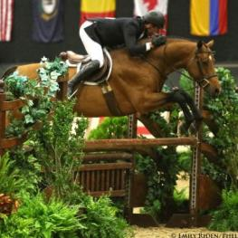 Scott Stewart and Lucador earned the 2014 Grand Hunter Championship with a clean sweep of the Green Conformation Hunter division. Photo by Emily Riden/Phelps Media Group.