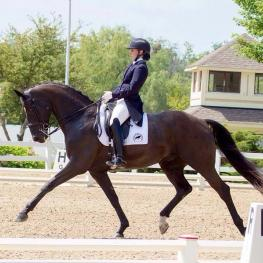 SkyWalker HW and Catherine Reid, NWDC PSG, reserve Champion and 5th in the national PSG class at the Dressage National Championships