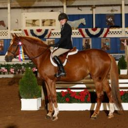 Sydney DeGrazia rode to top honors on Reville Z in the Non-Pro Hunter division. Photo by CreeksideFoto.com