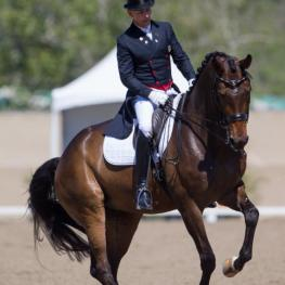 Steffen Peters guided Rosamunde to her first Grand Prix Freestyle win at the Festival of the Horse CDI. (Photo: Terri Miller)