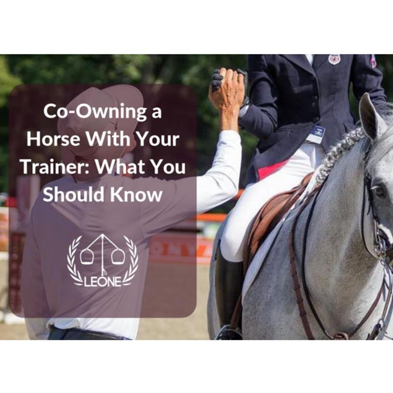 Co Owning a Horse