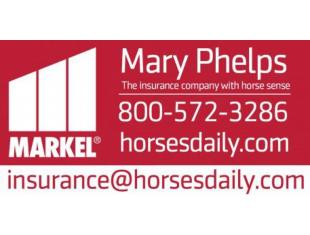 mary phelps banner
