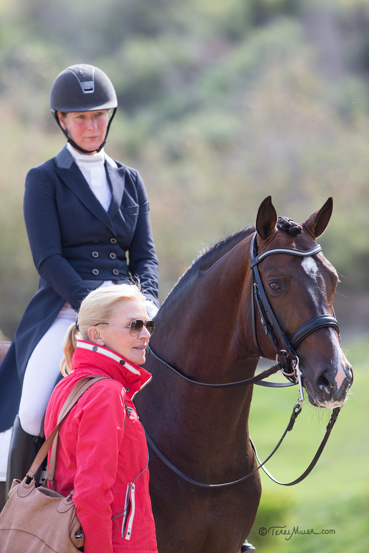 Incoming Usef Dressage Young Horse Coach Christine Traurig